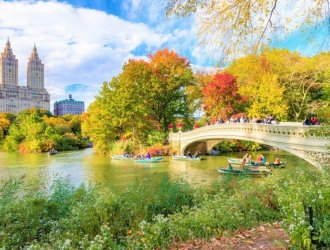 5 Reasons Why New York Is A Bore