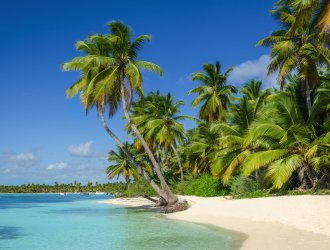 The 5 Best Beaches In The Dominican Republic