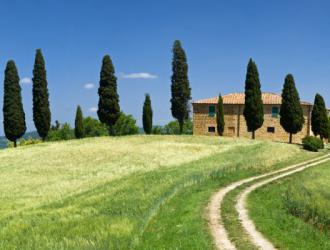 Tuscany: A Local's Guide