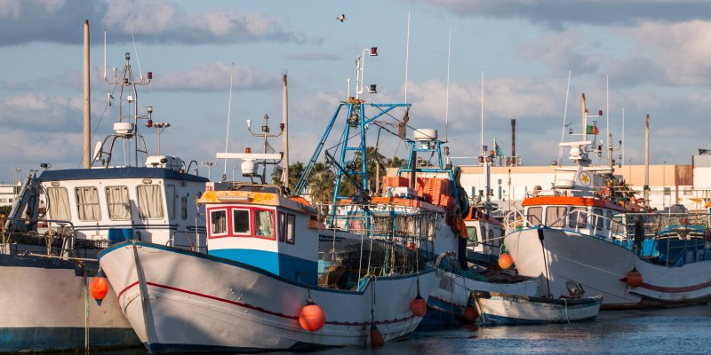 The Top 6 Things To See And Do In And Around Olhao