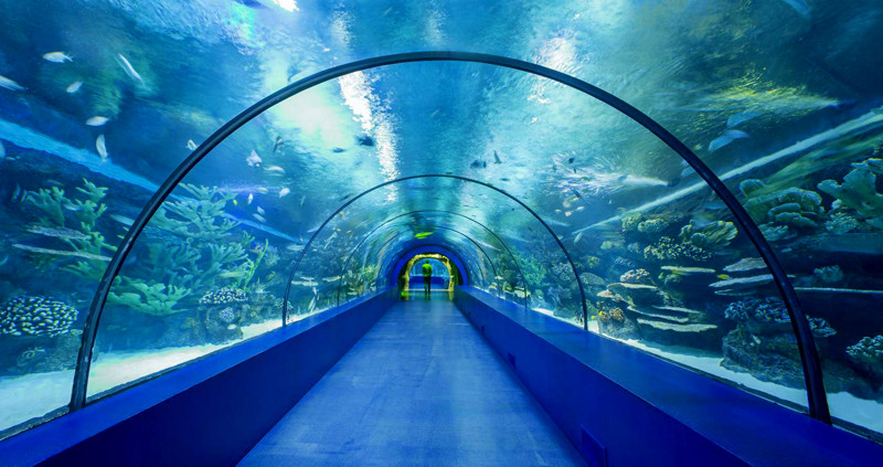 antalya aquarium Turkey Kids Family Holiday