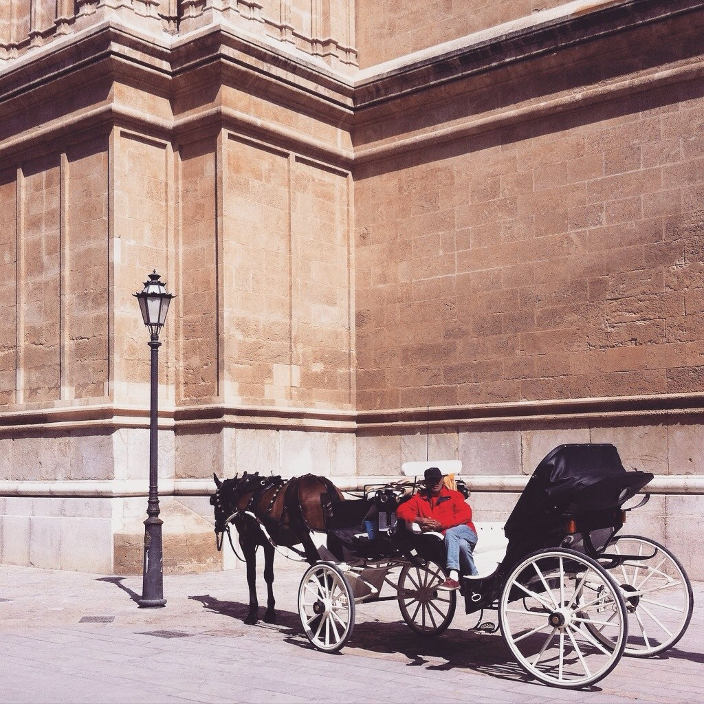 Man and horse carriage outside of Palma Cathedral, Mallorca