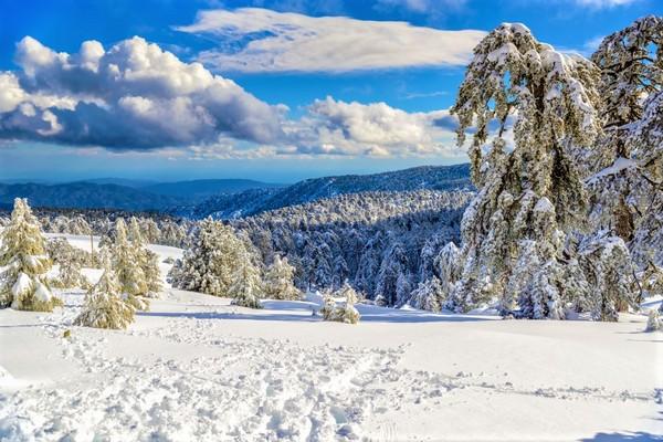 The Troodos Mountains
