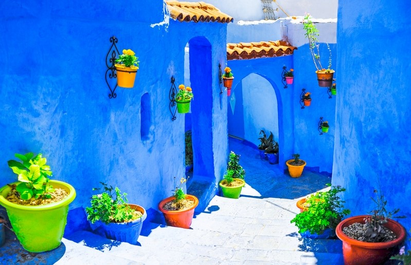 colourful staircase with plants in Morocco