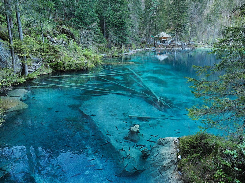 Lake Blausee in natural forest