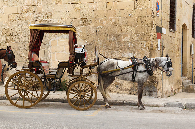 Take a journey on a Maltese Karozzin