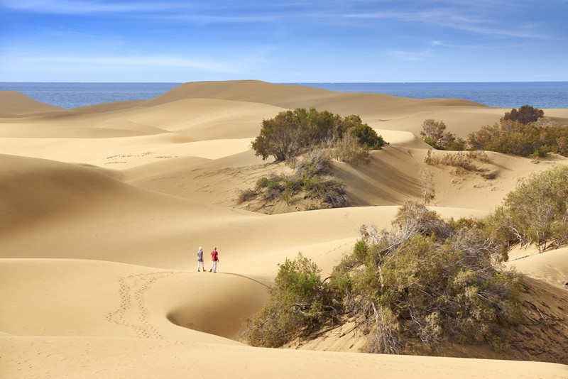 The incredible sand dunes of Maspalomas, Gran Canaria