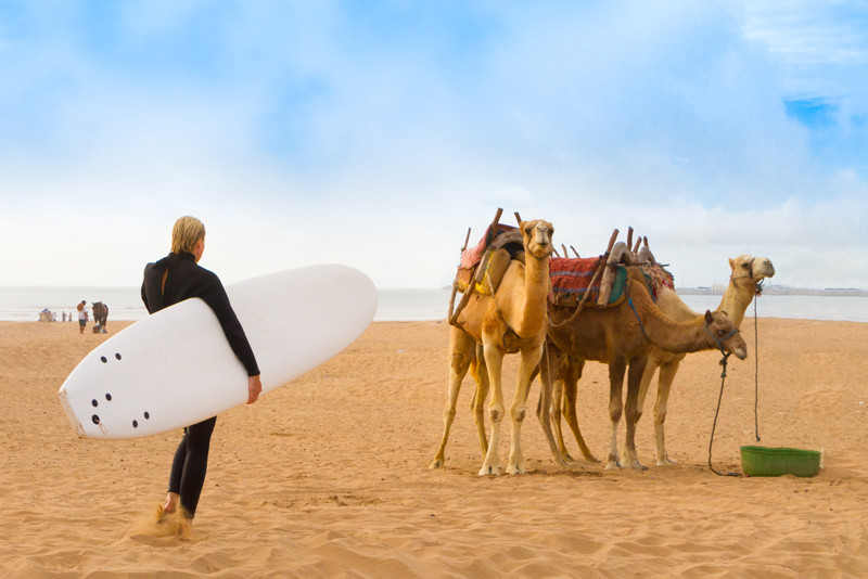 surfing in Essaouira