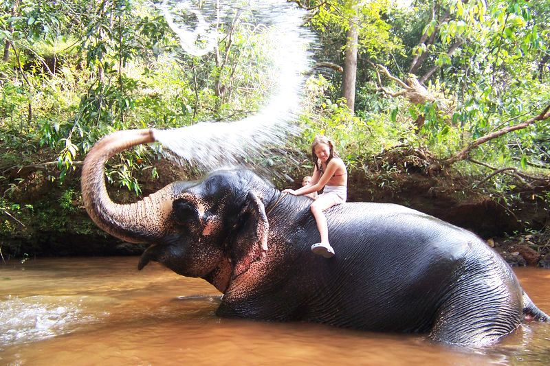 Elephant Ride Goa