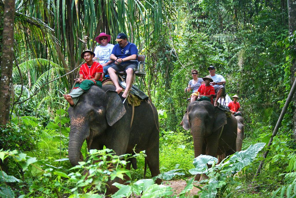 elephant tours Koh Samui