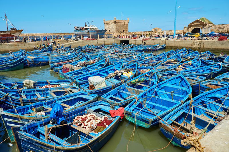 fishing port in Essaouira