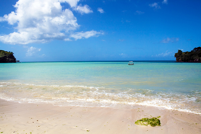 Beaches in the Grenada in the Caribbean