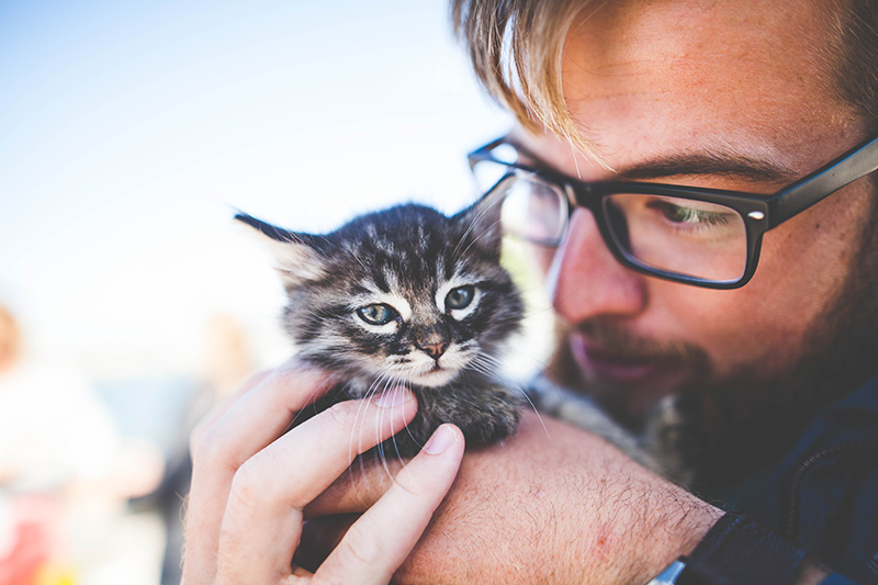 Man with therapy cat