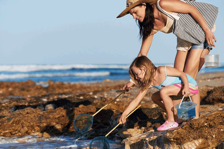 Mother and daughter rockpooling