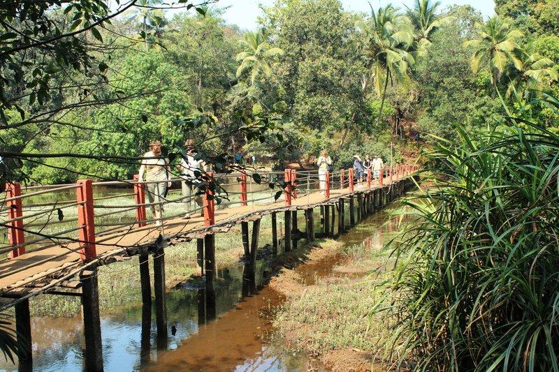Spice Plantation Goa