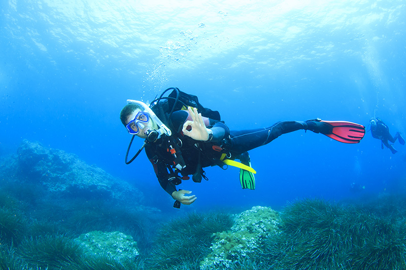 Malta has been voted one of Europe's top diving destinations