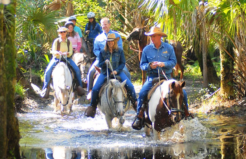 Florida Horseback Trails Nature Family Holiday