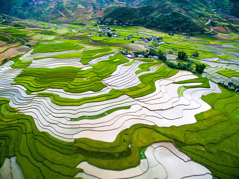 Terraced rice fields in water season in Mu Chang Chai