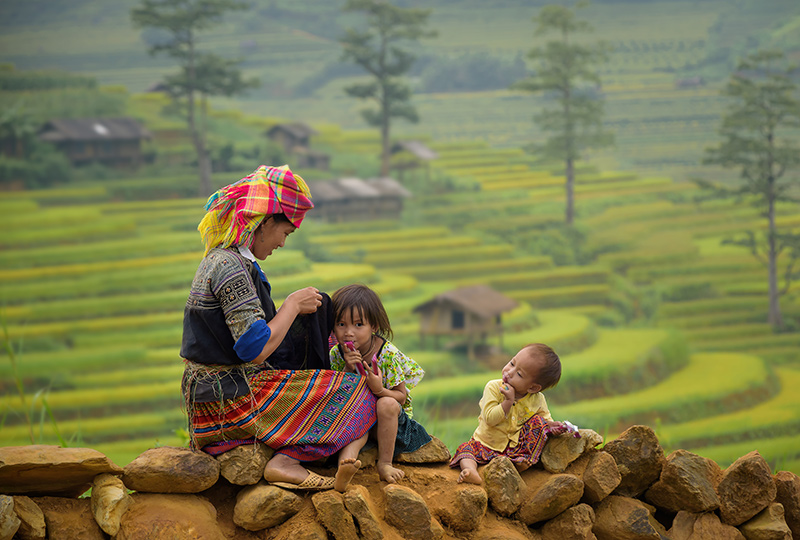 Local Vietnamese woman, with children and sitting in rice fields