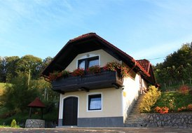 Vineyard cottage Krivic 1-3pax