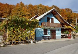 Vineyard cottage Meglic 6pax