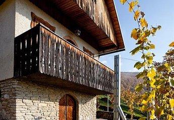 Cottage in Slovenia, Drča