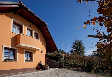 Cottage in Klenovik, Slovenia