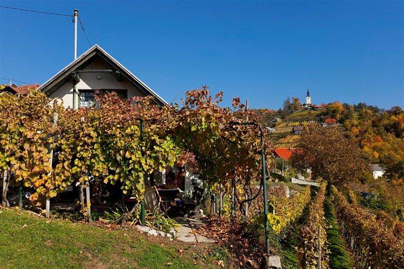 Cottage in Slovenia, Trška Gora