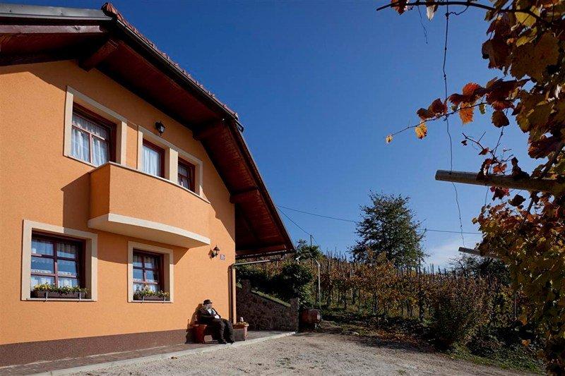 Cottage in Slovenia, Klenovik