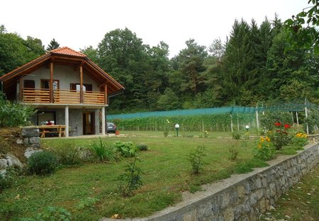 Cottage in Rožič Vrh, Slovenia