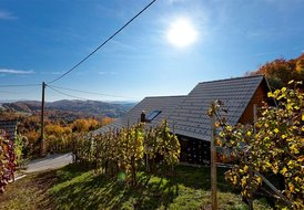 Vineyard cottage Meglic 1-4pax