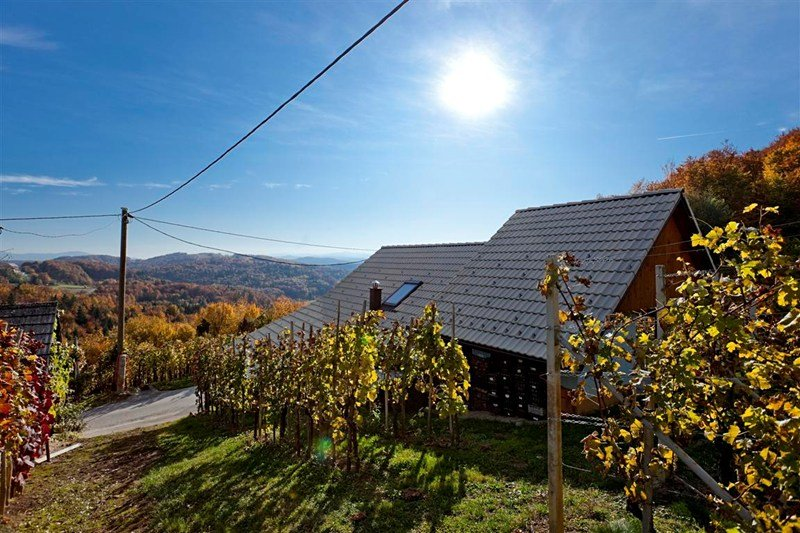 Cottage in Slovenia, Lukovek