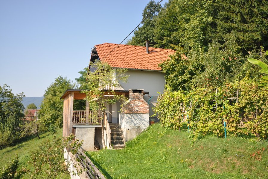 Vineyard cottage Krštinc 1-2pax