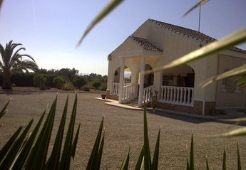 Finca in Spain, Elche: Finca Paola: 7km from great beaches set in quiet countryside