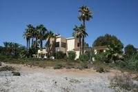 Large rustic house right on the beach with private mature gardens