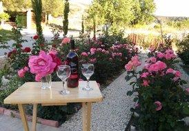 Roses Villa at Trimiklini village