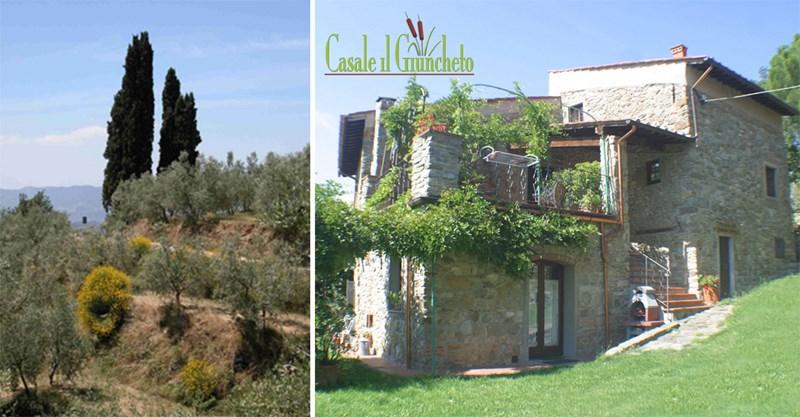 Farm house in Italy, Castelfranco