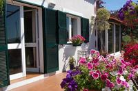 Apartment in Portugal, Ponta do Sol: Jasmine cottage
