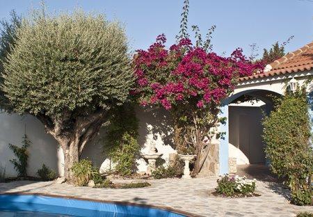 Villa in Abanilla, Spain: SONY DSC