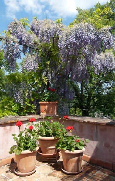 Villa in Italy, Tuscany