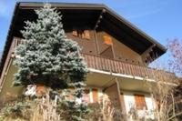 Chalet in Switzerland, Fiesch (wallis): View of Chalet from Garden