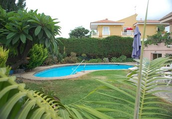 Villa in Spain, Puerto de la Cruz: The swimming pool