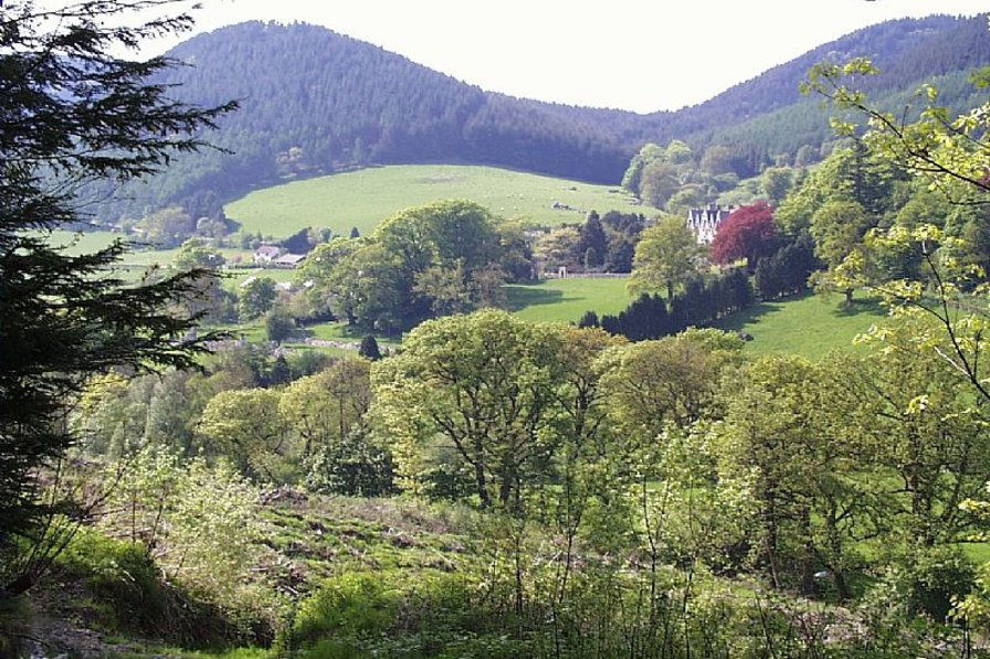Cottage in United Kingdom, Abbey Cwmhir: Looking towards the village