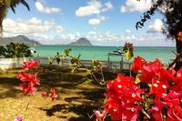 Villa in Mauritius, Black River (Riviere Noire): From the veranda, enjoy the beautiful sea view.