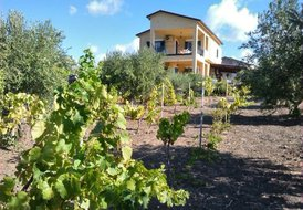 Villa Best Sicilian spot for a Relaxing and unforgettable Holiday