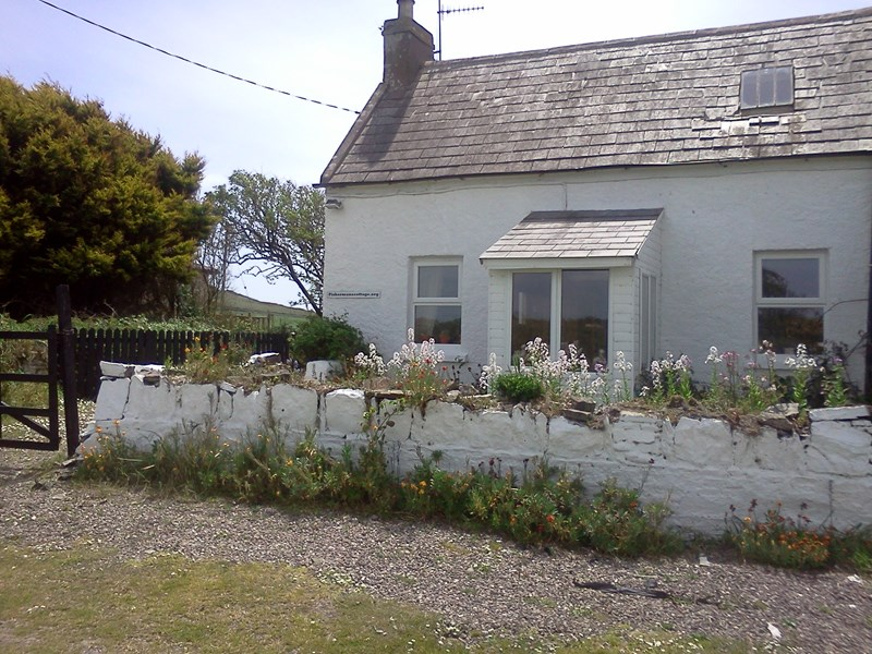 Cottage in Ireland, Ardmore: Front of Cottage