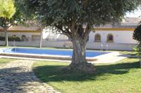 Villa in Spain, Los Montesinos: Communal Pool Area, Jus a Few Yards From Villa Monte