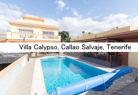 Villa in Callao Salvaje, Tenerife
