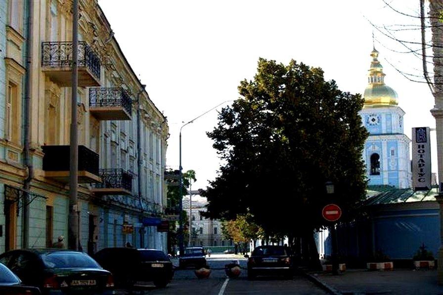 Best Kiev apartments (ID.287) Triokhsviatytelska, 9
