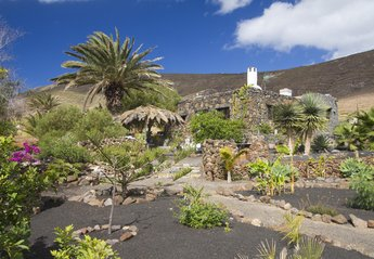 Finca in Spain, Haría: The mature tropical garden at Finca Natura